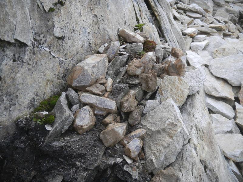 In kürzester Zeit konnte Marco über 100 kg Bergkristalle aus der Kluft bergen...