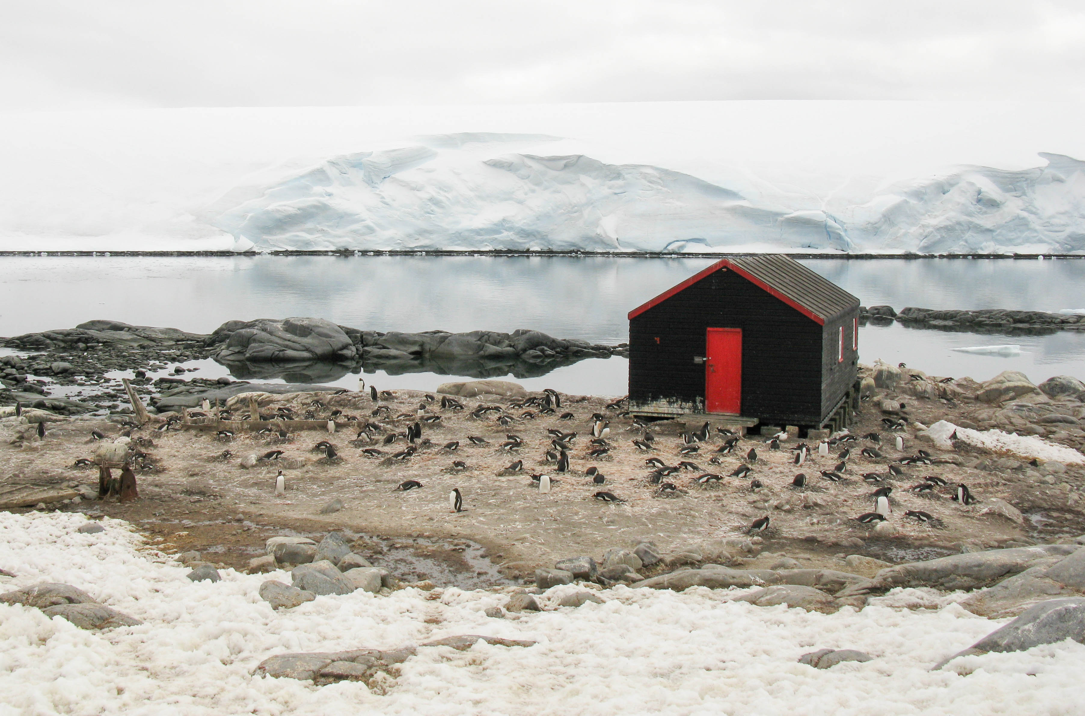 Port Lockroy, Antarctic Peninsula