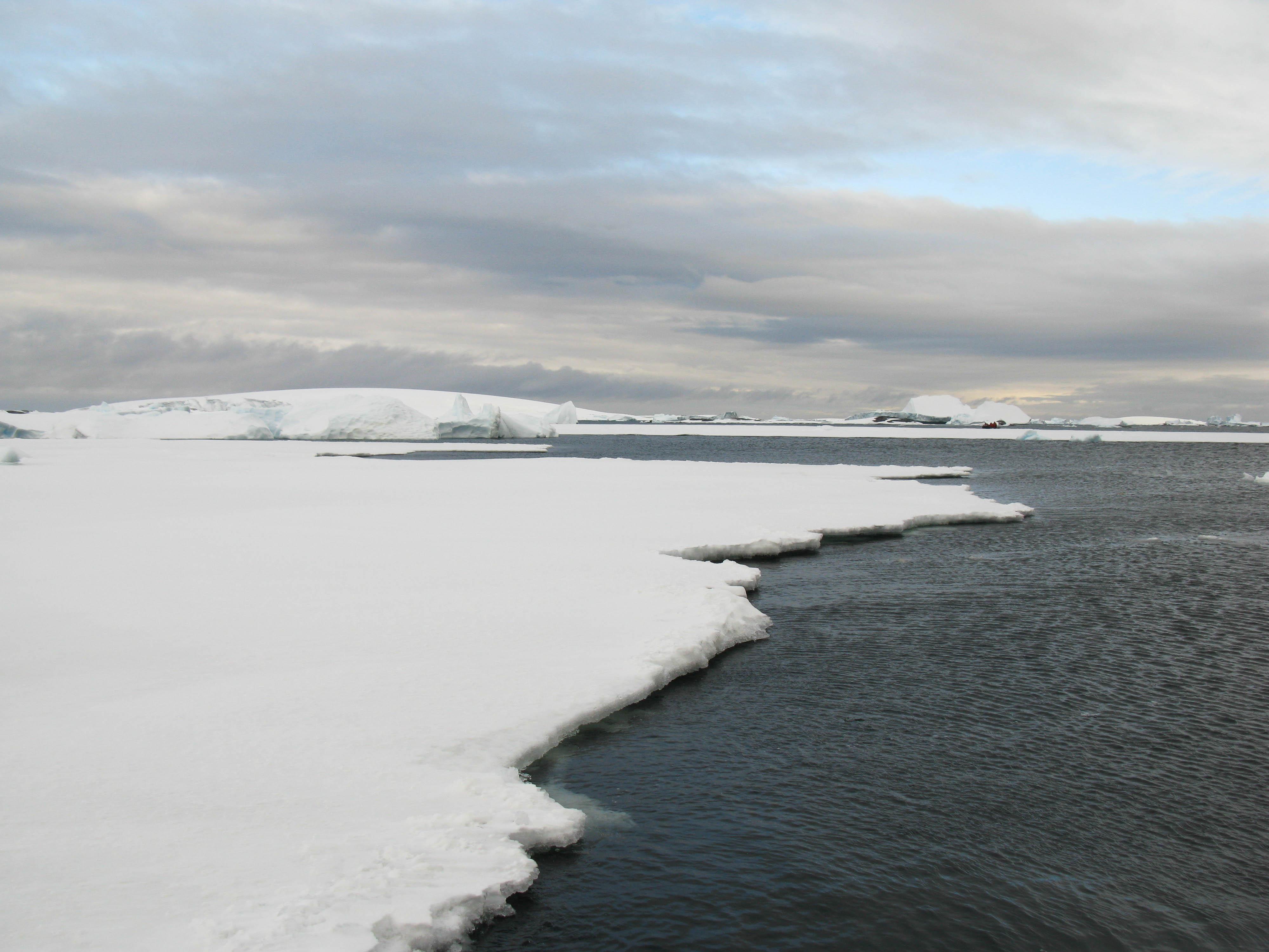 Pléneau Island, Antarctica