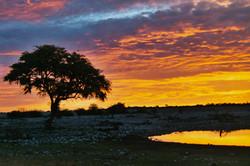 Sunset over Etosha NP, Namibia