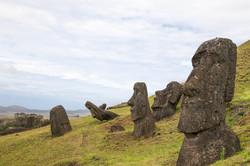 Moai heads in the quarry at Rano Raraku