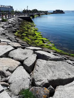 Puerto de A Coruña, Galicia