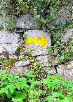 Wall waymarker