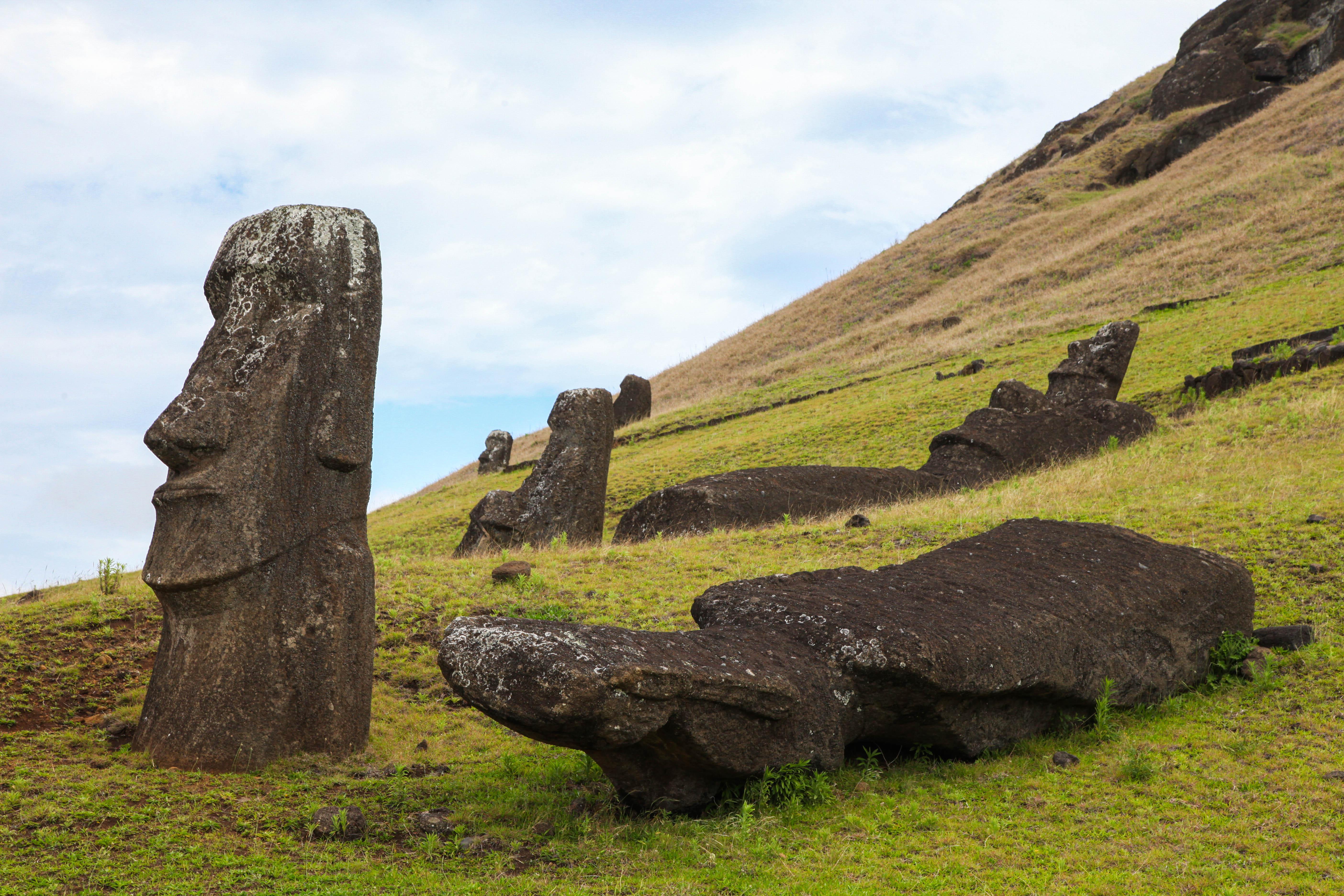 Fallen moai at Rano Raraku
