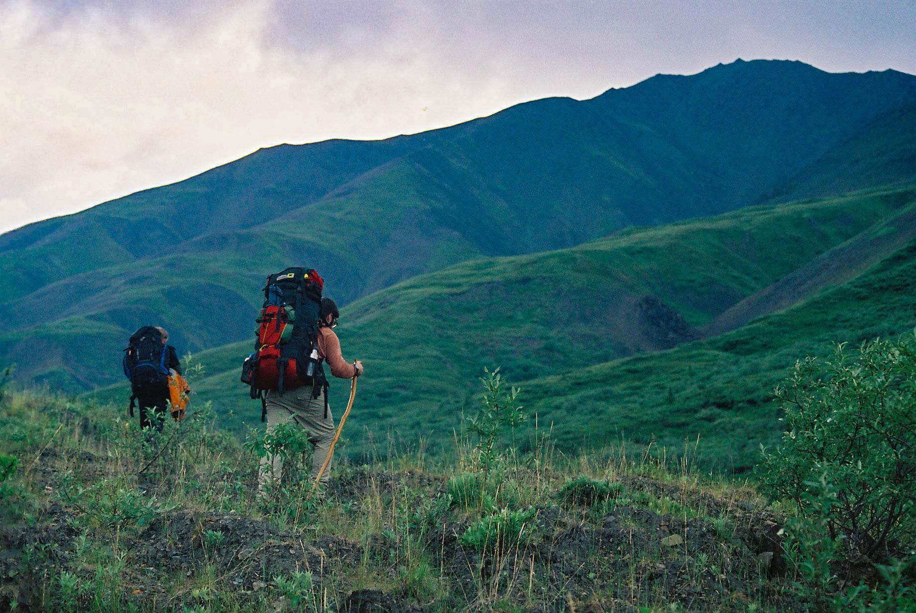 Hiking, Denali NP