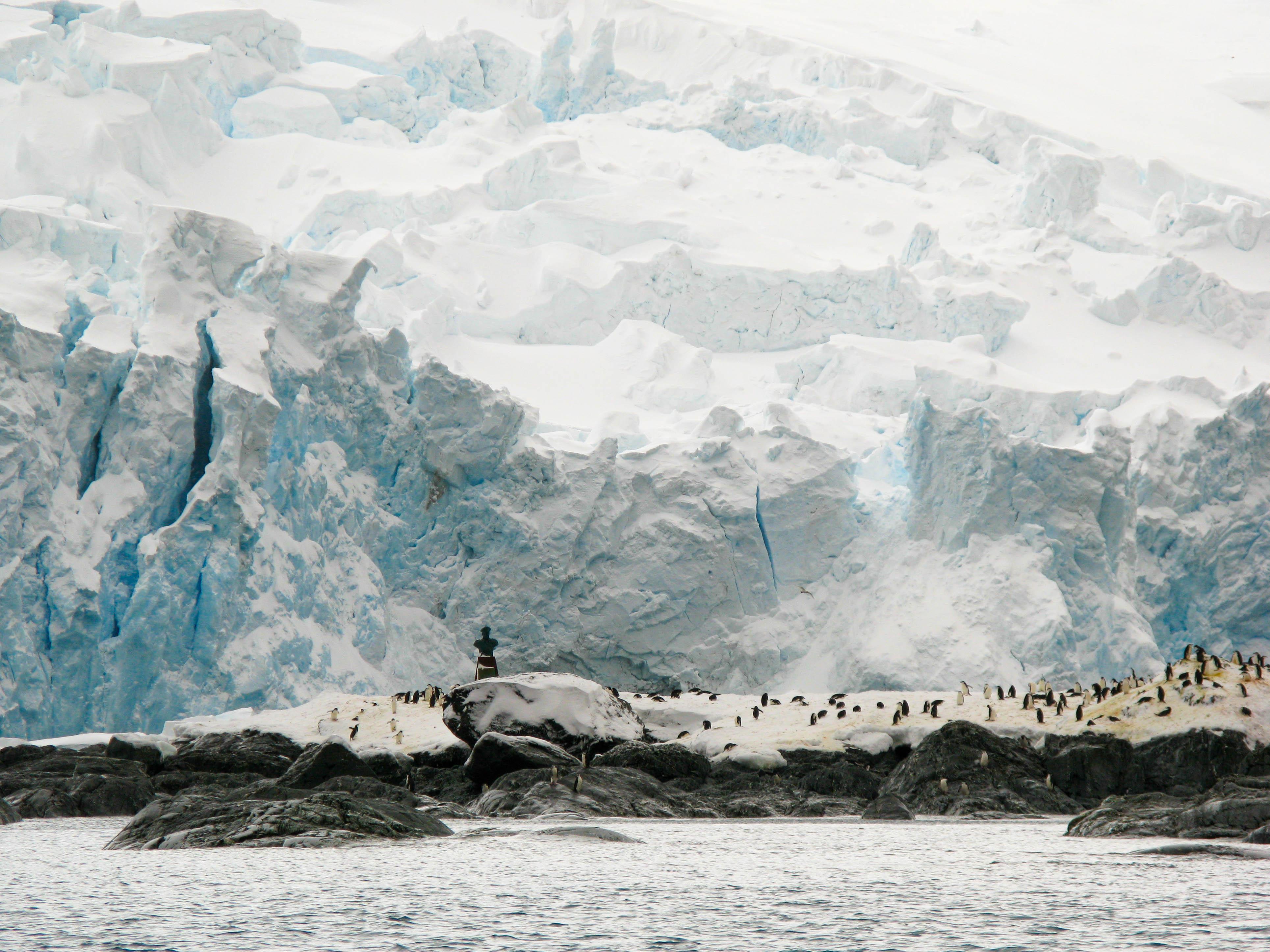 Wild Point, Elephant Island