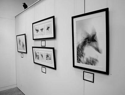 Exhibition Shots  (76).jpg