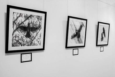 Exhibition Shots  (25).jpg