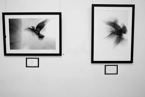 Exhibition Shots  (3).jpg