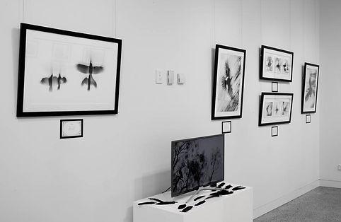 Exhibition Shots  (4).jpg