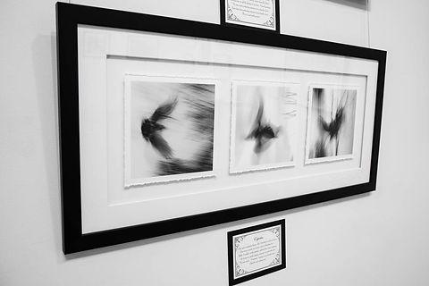 Exhibition Shots  (52).jpg