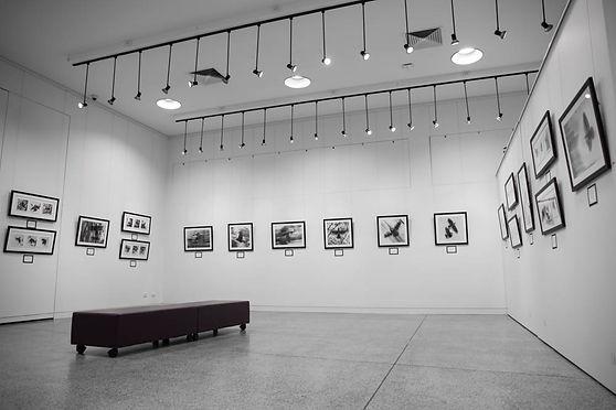 Exhibition Shots  (47).jpg