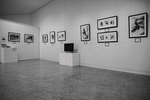 Exhibition Shots  (48).jpg