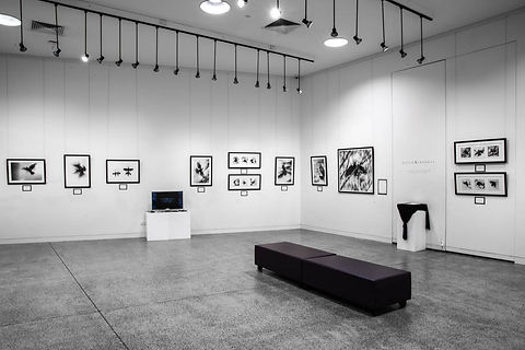 Exhibition Shots  (34).jpg