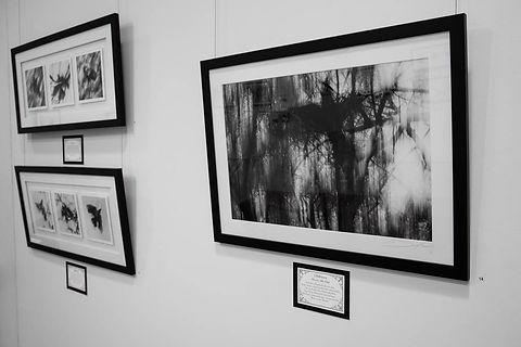 Exhibition Shots  (57).jpg