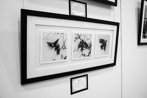 Exhibition Shots  (54).jpg