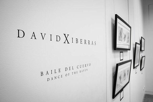Exhibition Shots  (42).jpg