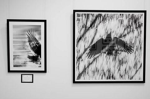 Exhibition Shots  (10).jpg