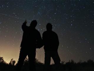 Kutup Yıldızı-Şirketlerin Temel Değerleri