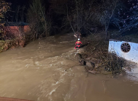 3 women drown rescuing dogs in Slovakia floods.