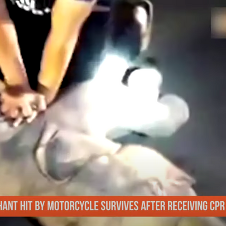Szívmasszázst adott a kiselefántnak a thai mentős, ezzel megmentve az életét - VIDEÓ