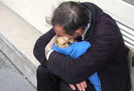 """Mette in salvo il suo cane, poi muore: """"Mi è rimasto solo lui, vi prego salvatelo"""""""