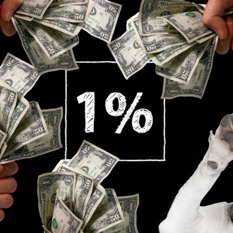 Ennyi pénzt gyűjtöttek az adó 1%-ból a hazai állatvédők