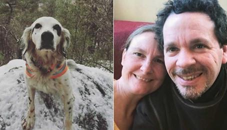 Meghalt a kutya aki egy medvétől védte meg gazdáját