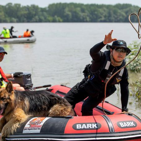 Dunaújvárosnál motorcsónakból, kutyákkal keresik a hajóbaleset áldozatait