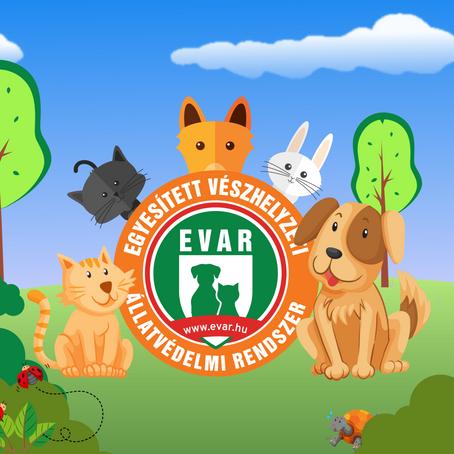 Díjat nyert az EVÁR-t készítő cég, a WebGarden