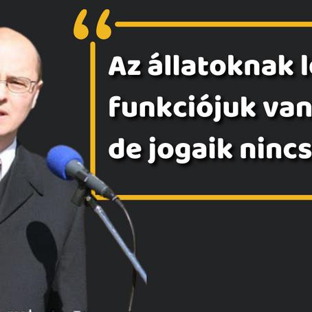 Egy volt fideszes politikus szerint az állatoknak nincsenek jogaik, ezért fölösleges az állatvédelem