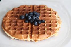 Gluten Free Flax Blueberry Pancakes