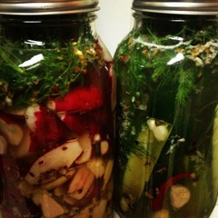 Pickled Probiotic Veggies