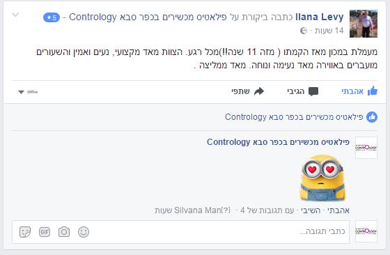 ביקורת אילנה לוי לפייסבוק