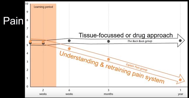 לימוד מחדש של מנגנון הכאב עובד