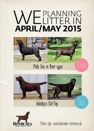 We are planning next Phibi's puppies!!!
