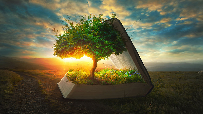 A tree and garden grow out of the pages