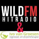 Wild Hitradio.jpg