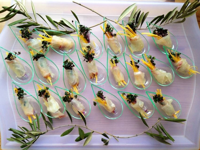 S社オリーブ収穫祭