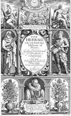Gerard's Herbal Title Page.jpg