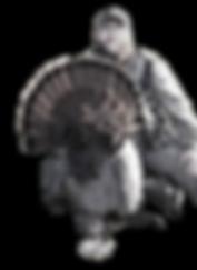 Turkey Gobbler