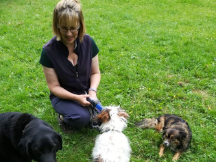Tanya joins Doggie Holiday Homes Cams Hill