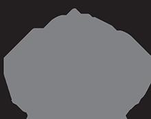 ACUTO_logo_Grey1_small.png