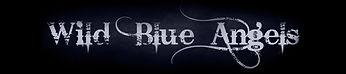Logo_Blue1_edited.jpg