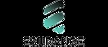 cropped-Esurance-Logo-square-1-300x132.p