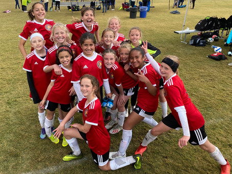 Congratulations to both the 08 Boys and Girls teams this weekend at State Cup!!