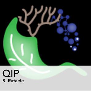QIP_PICTO_GALERIE.jpg