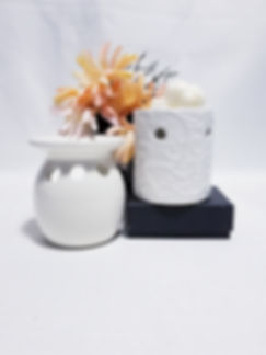 Wax Warmer - Accessories