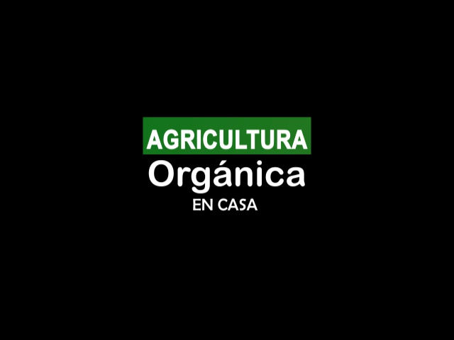 AGRICULTURA ORGÁNICA EN CASA