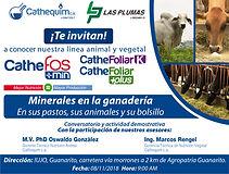 INVITACIÓN_MINERALES_ENLA_GANADERIA-01.j